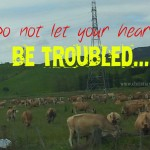do not let your heart be troubled John 14