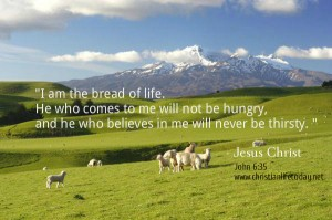 I am the bread of life. He who comes to me will not be hungry, and he who believes in me will never be thirsty