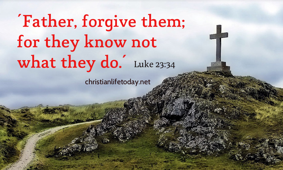 Daily Devotional: Divine Forgiveness