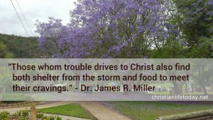 Dr. James R. Miller quote