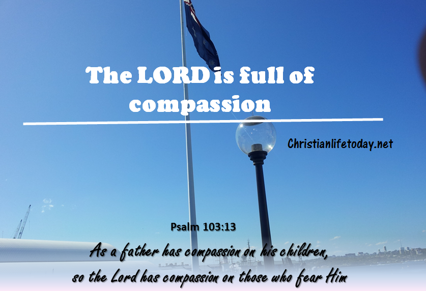 Psalm 103:3 As a father shows compassion to his children,     so the Lord shows compassion to those who fear him.